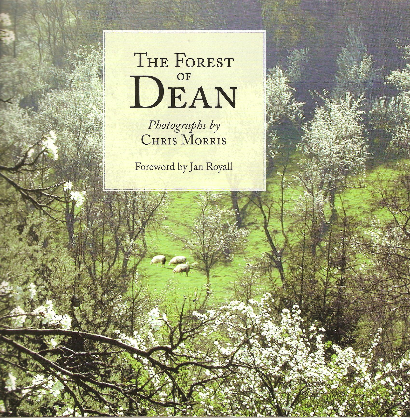 Image for The Forest of Dean