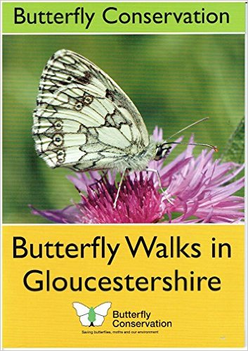 Image for Butterfly Walks in Gloucestershire