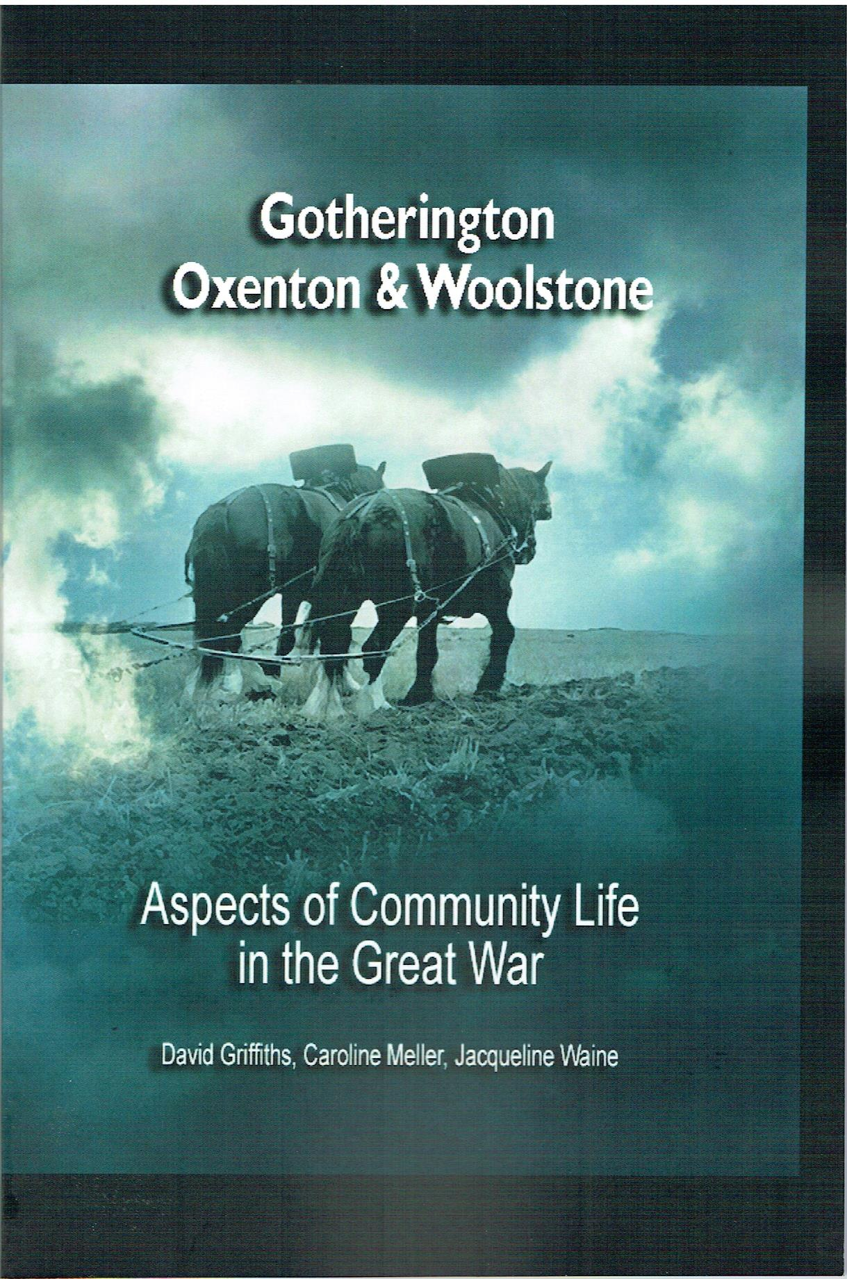 Image for Aspects of Community Life in the Great War